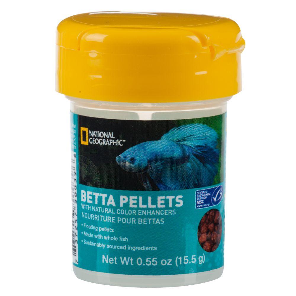 Beautiful betta fish for Petsmart fish guarantee