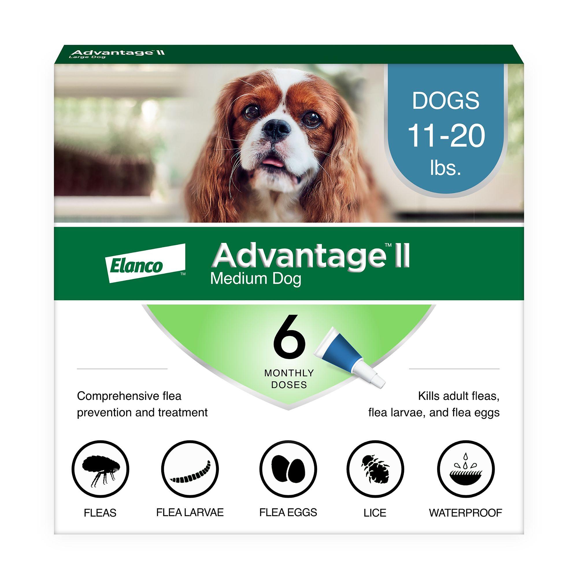 Advantage Ii 11 20 Lbs Dog Flea And Lice Treatment Size 6 Count