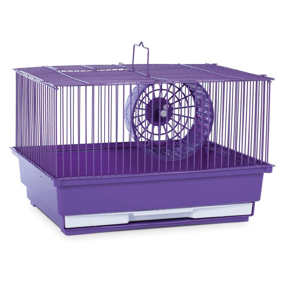 gerbil cages petsmart. Black Bedroom Furniture Sets. Home Design Ideas