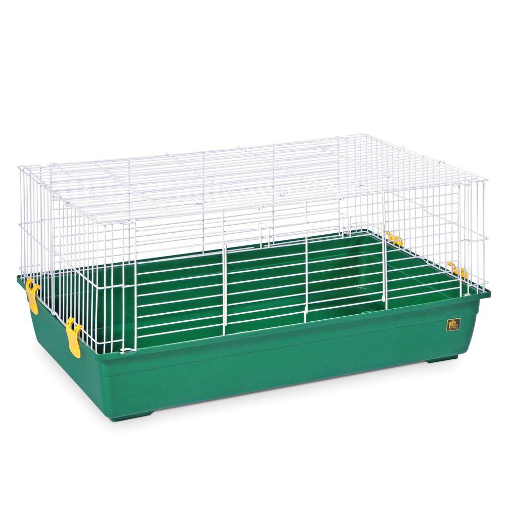 PetSmart - Animals_~_Pet_Supplies