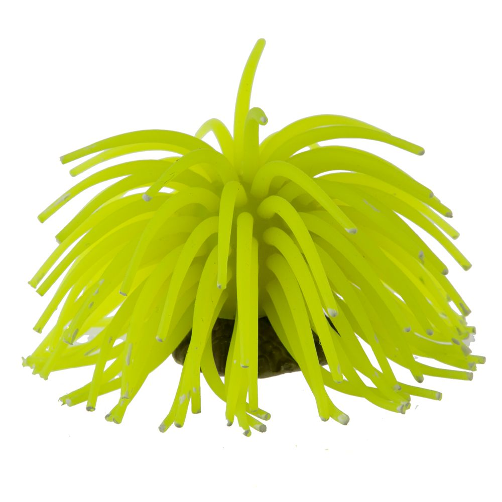 Top Fin Anemone Decor Yellow
