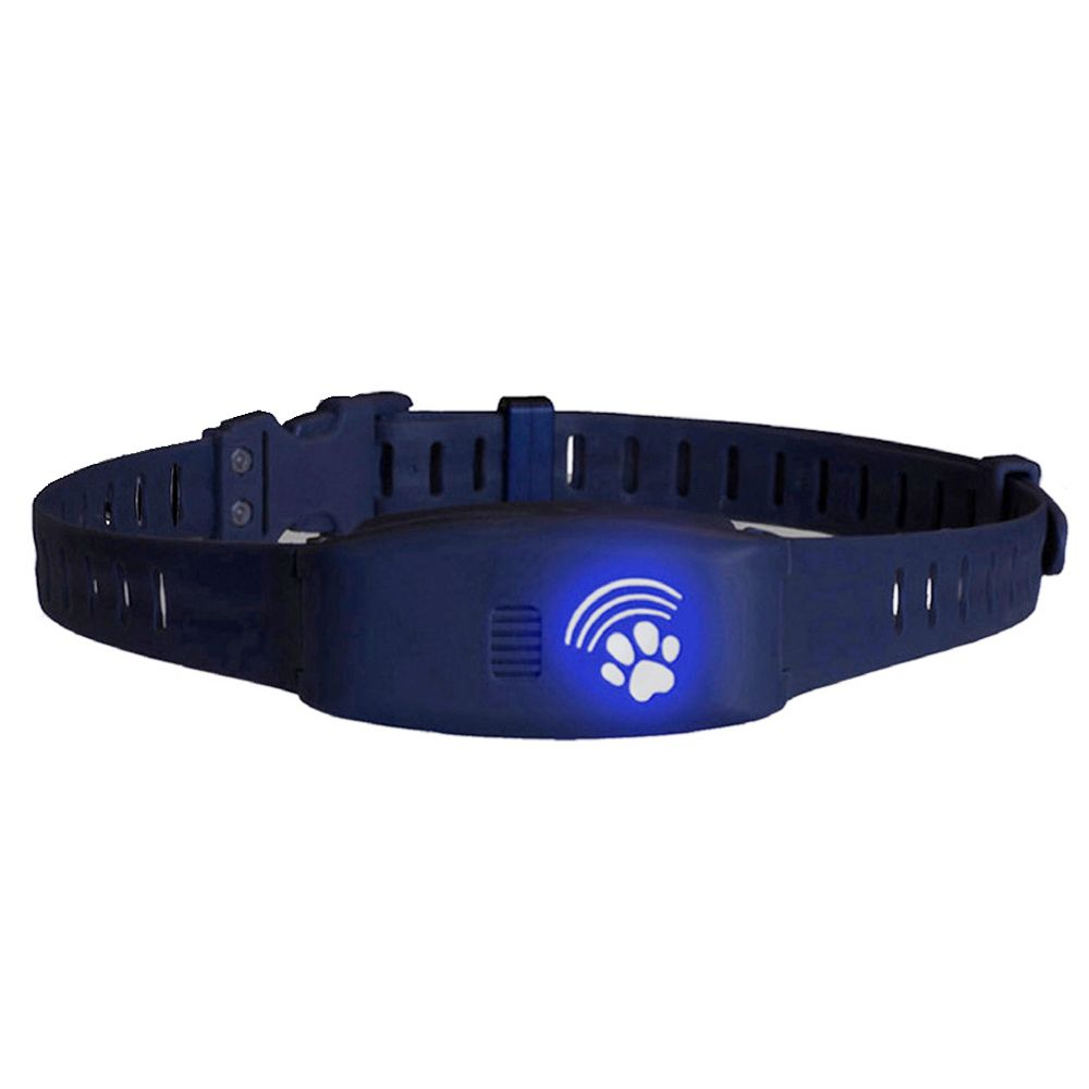 High Tech Pet Bluefang Bf 16 Training And Bark Control Dog Collar