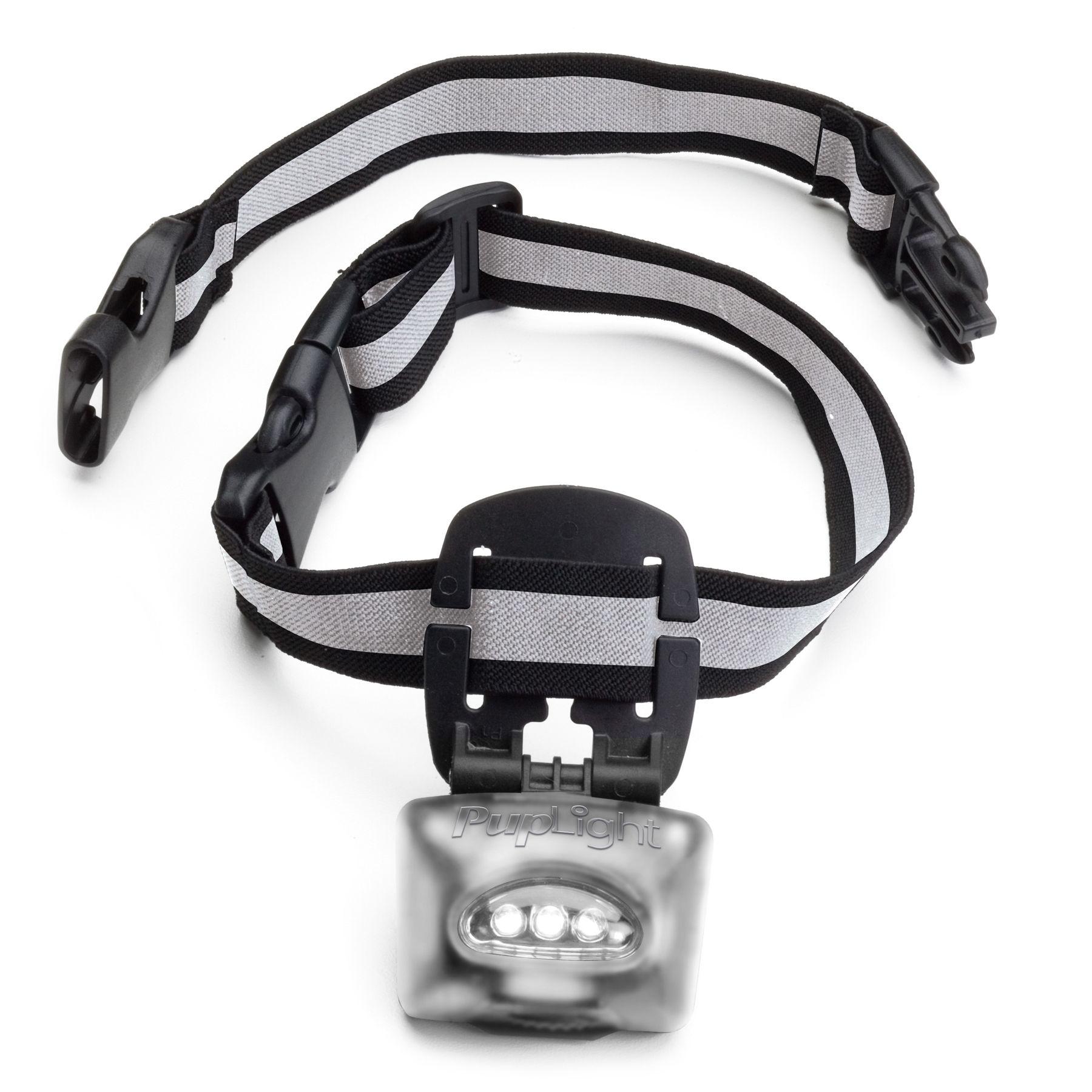 Puplight2 Led Adjustable Dog Collar Silver