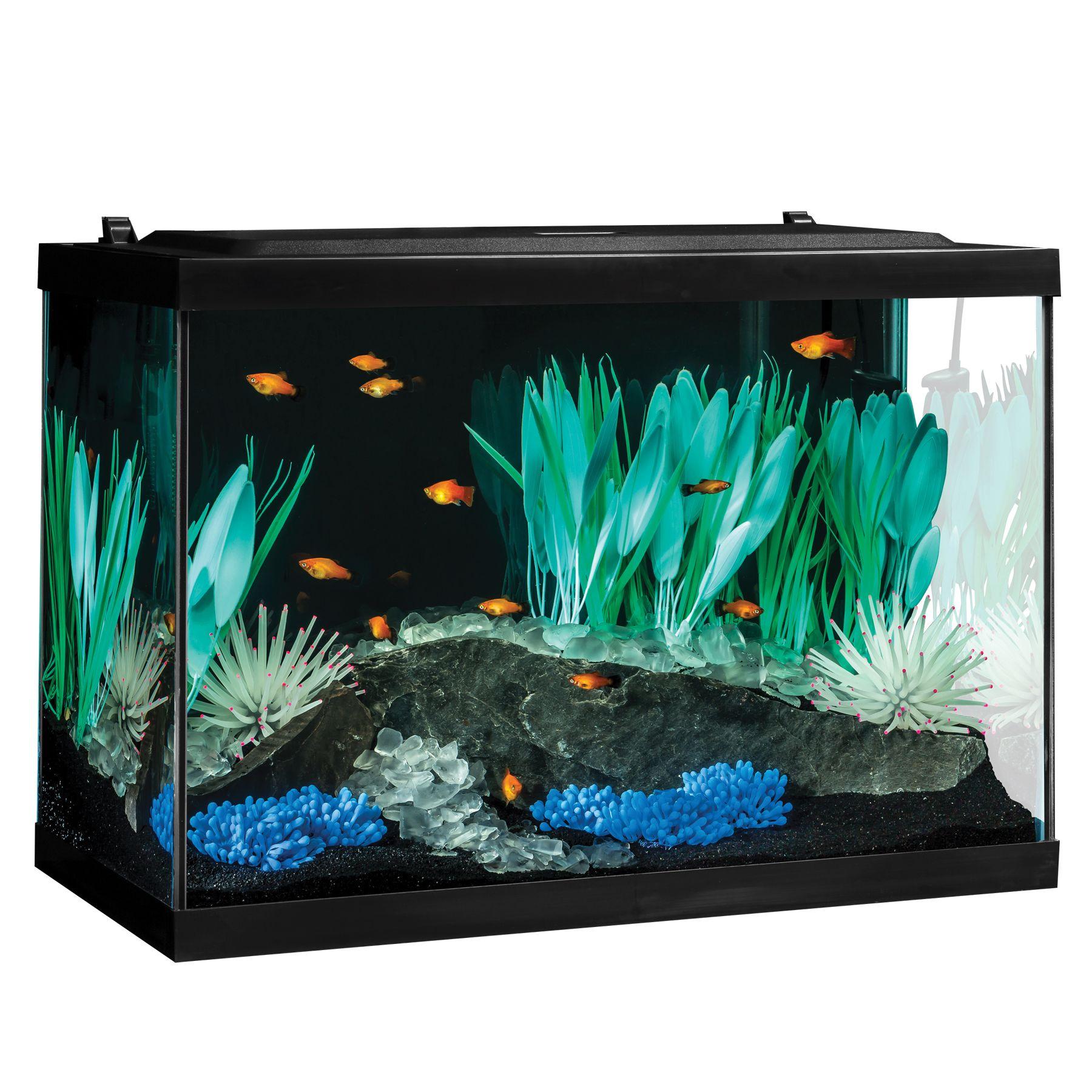 10 gallon aquarium stand white jbj 20 gallon aquarium for 10 gallon fish tank size