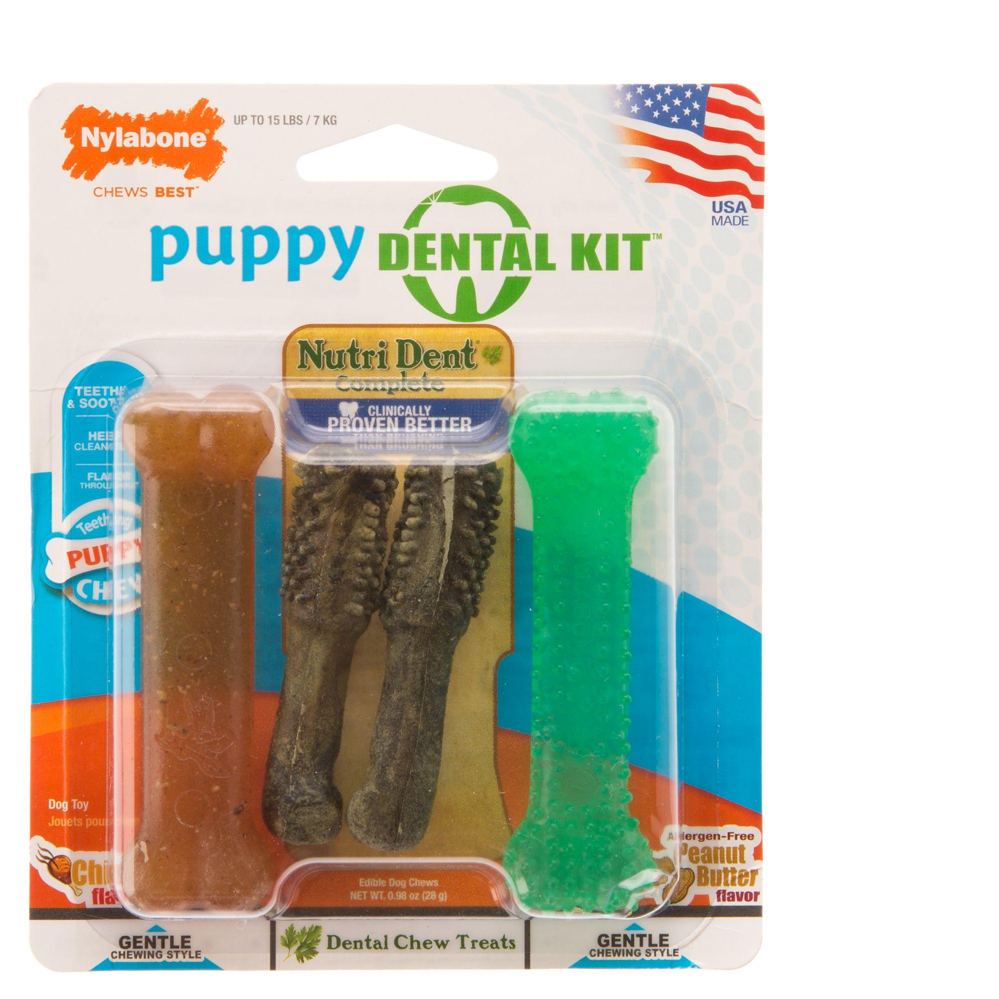 Nylabone® Puppy Dental Kit Dog Toy 5249825