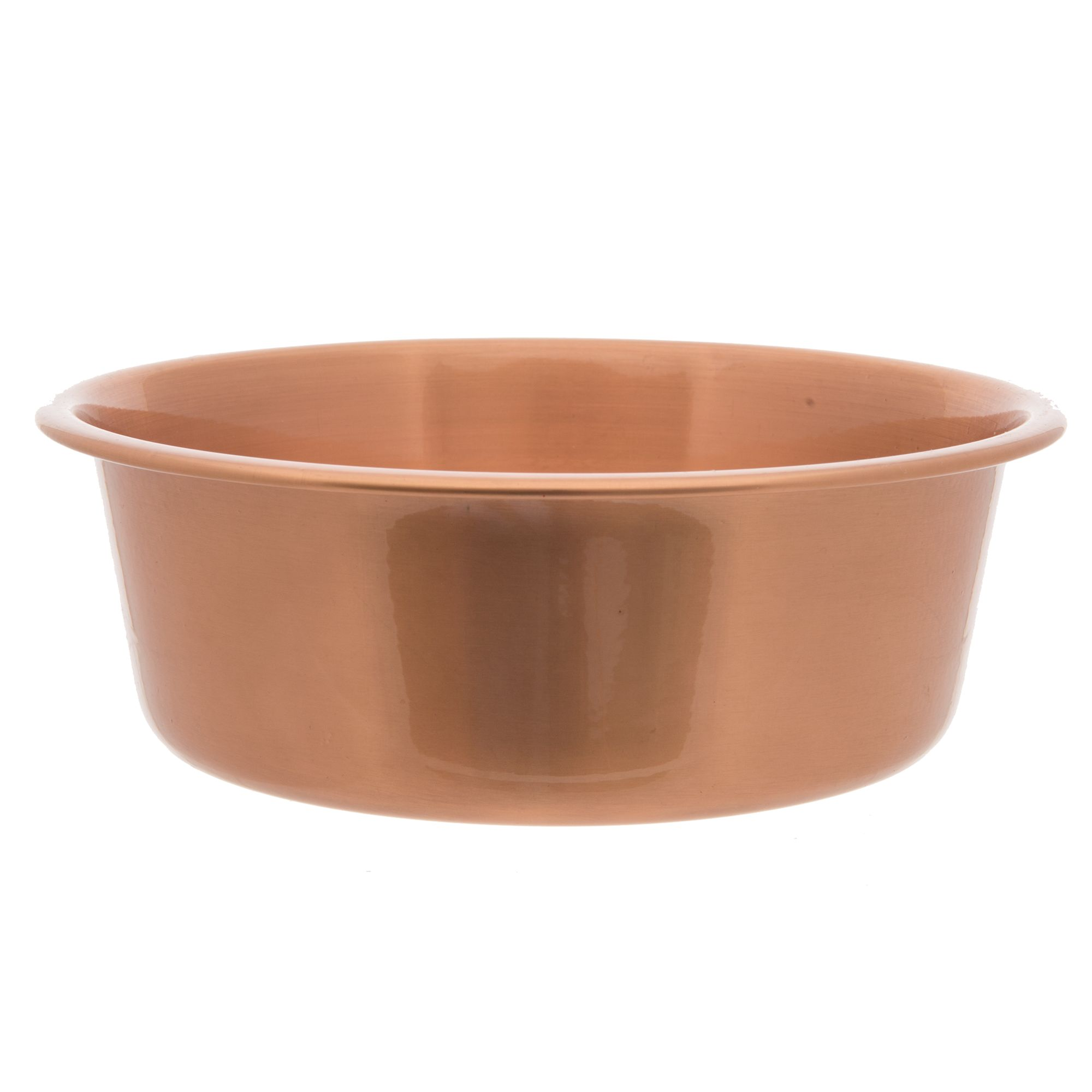 The bare necessities of puppy care suggestions of what for Petsmart fish bowl
