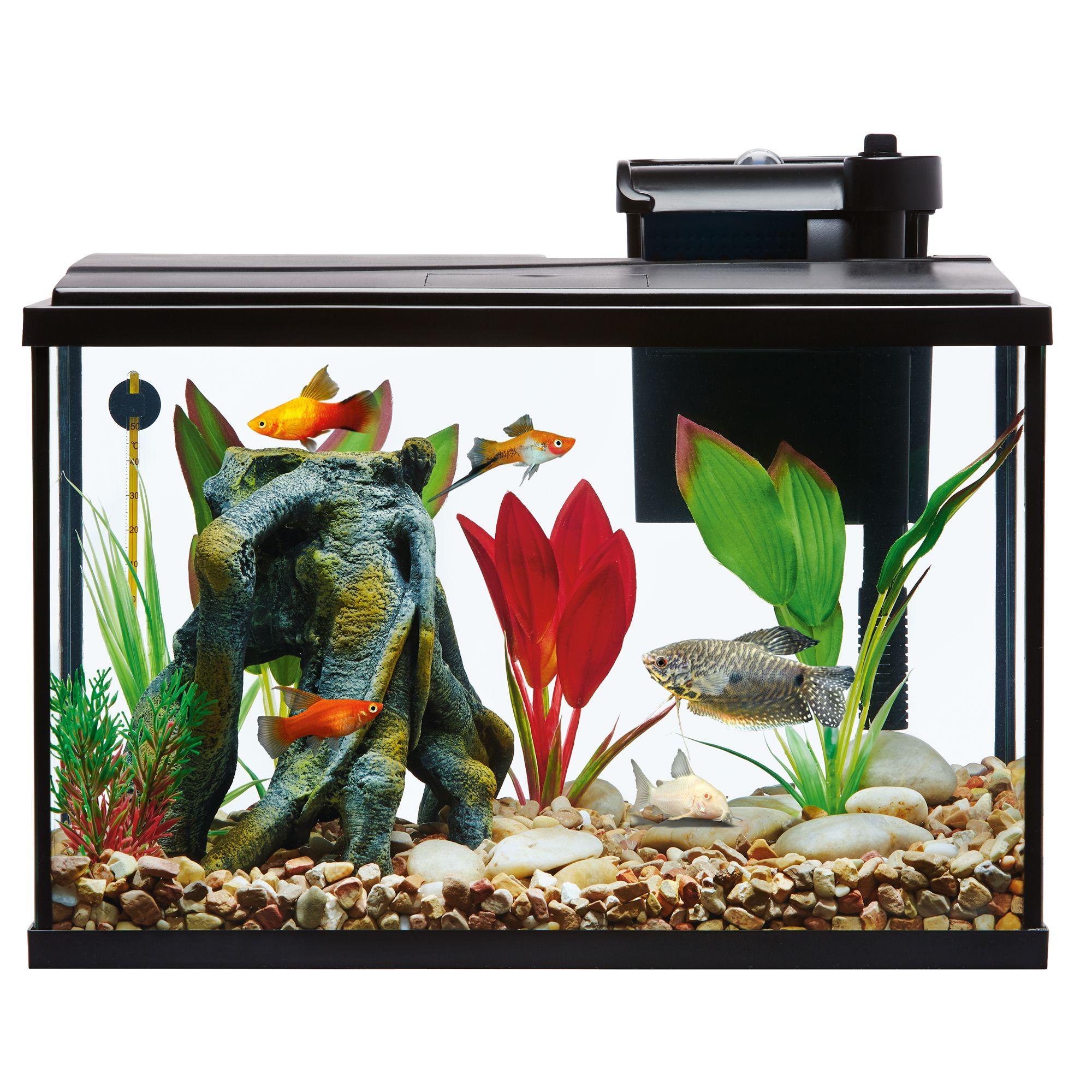 Aquarium top usa for Fish tank starter kit