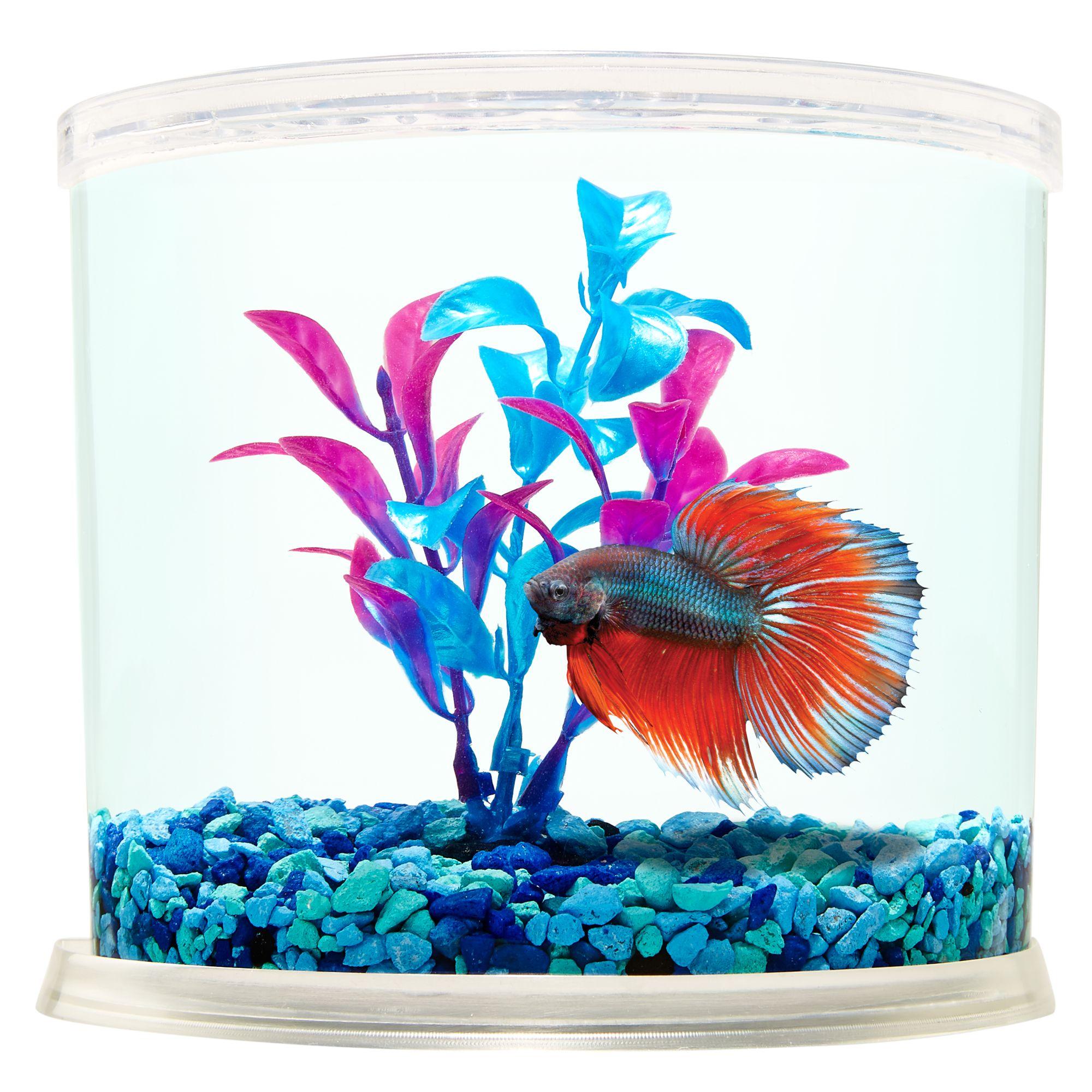 Aquarium top usa page 2 for Best betta fish tank
