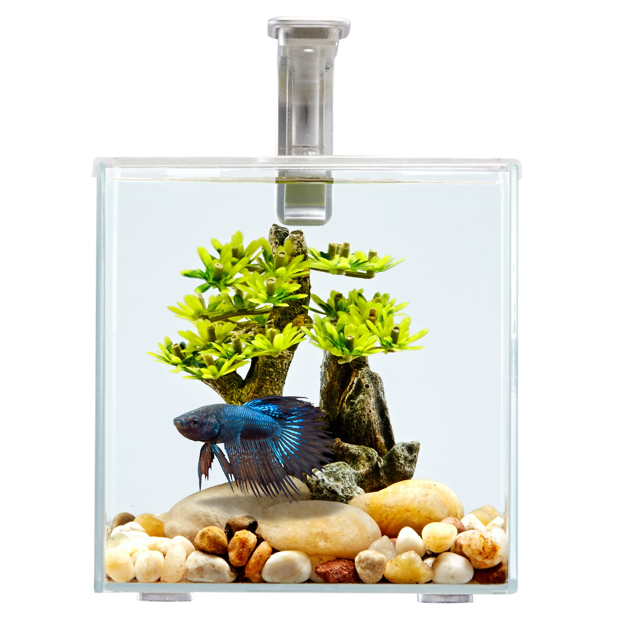 Top fin betta aquarium water conditioner for 2 gallon betta fish tank