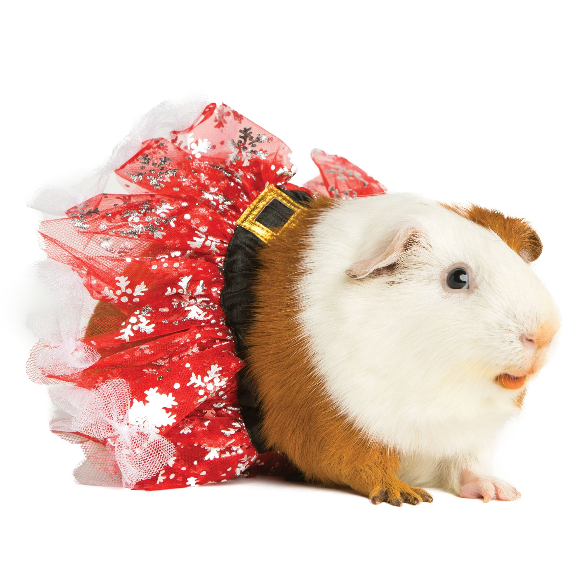 All Living Things Pet Holiday Small Pet Tutu Red