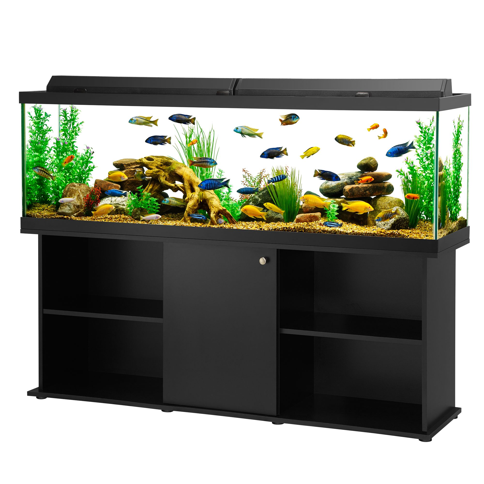 Aqueon usa for Aqueon fish tank