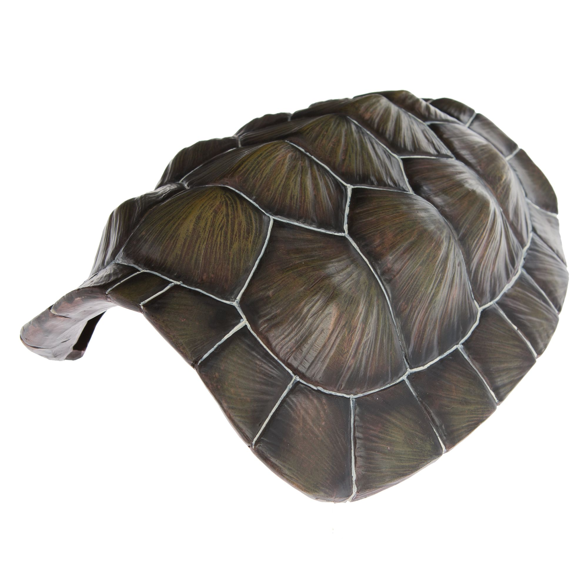 All Living Things Tortoise Shell Reptile Ornament Brown
