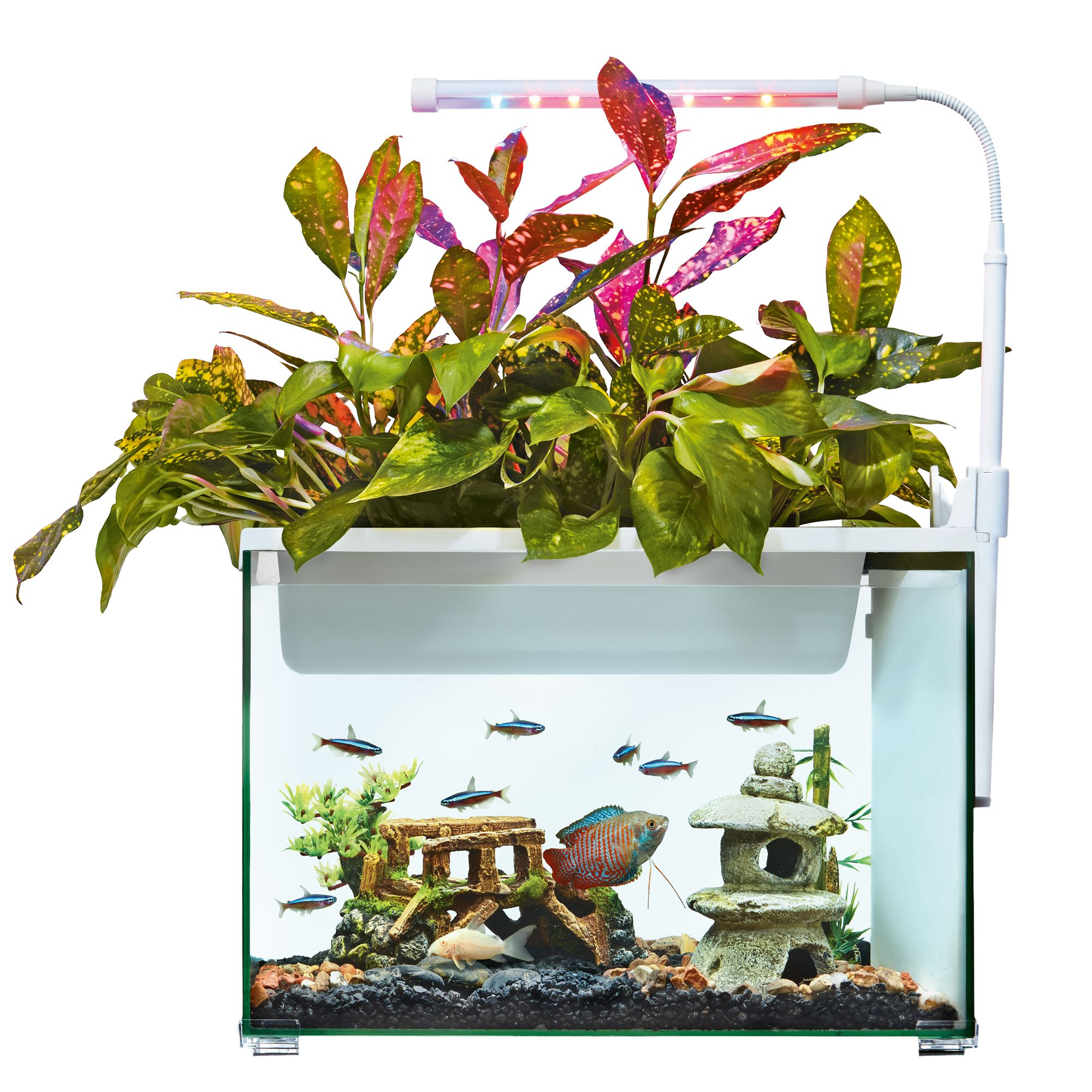 Aquarium top usa page 2 for 5 gallon fish tanks