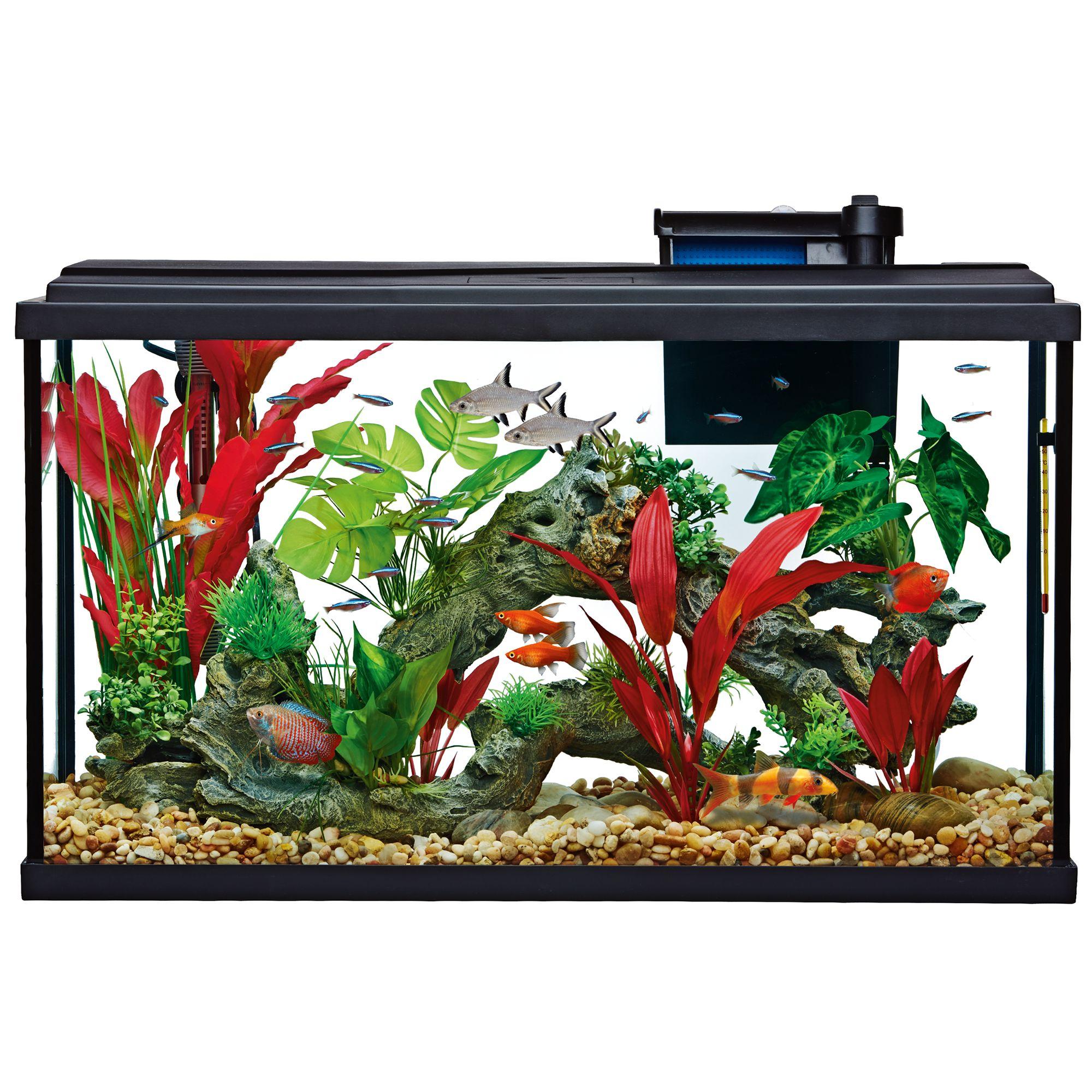 Aquarium top usa page 2 for 29 gallon fish tank dimensions