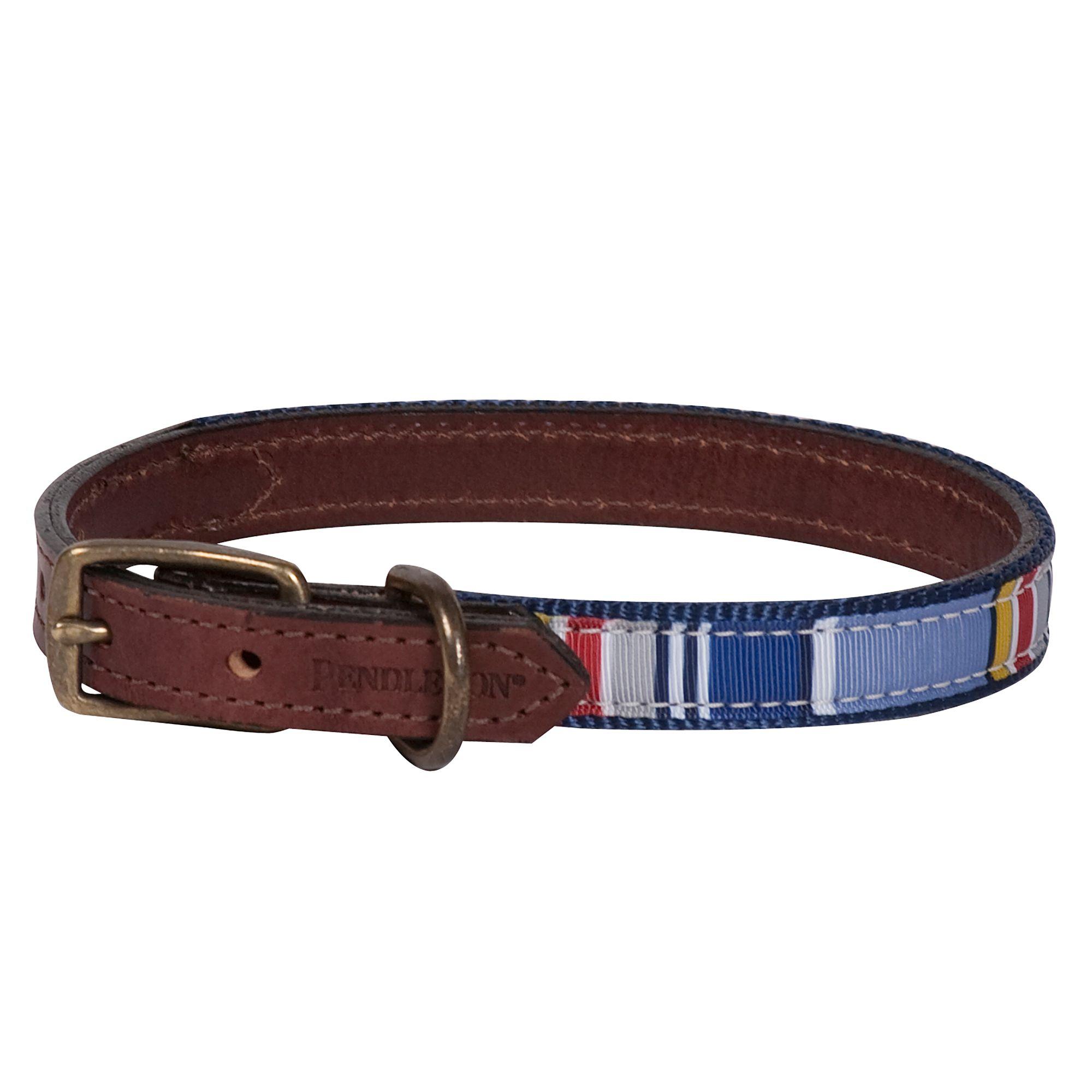 Pendleton National Park Yosemite Explorer Dog Collar size: Small 5263165