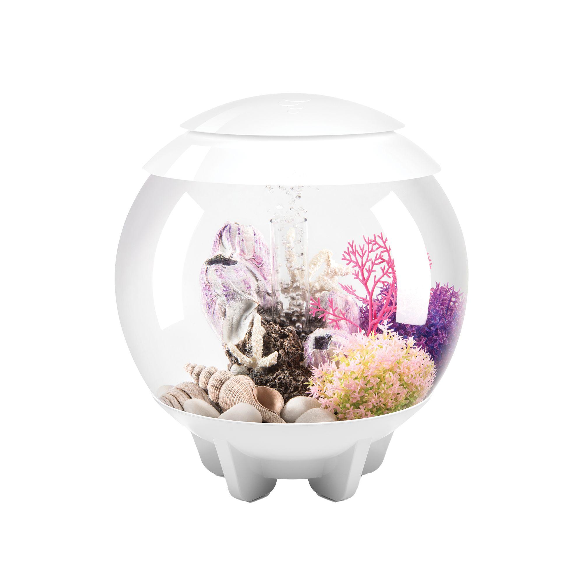 Gallon aquarium usa for Fish aquarium supplies