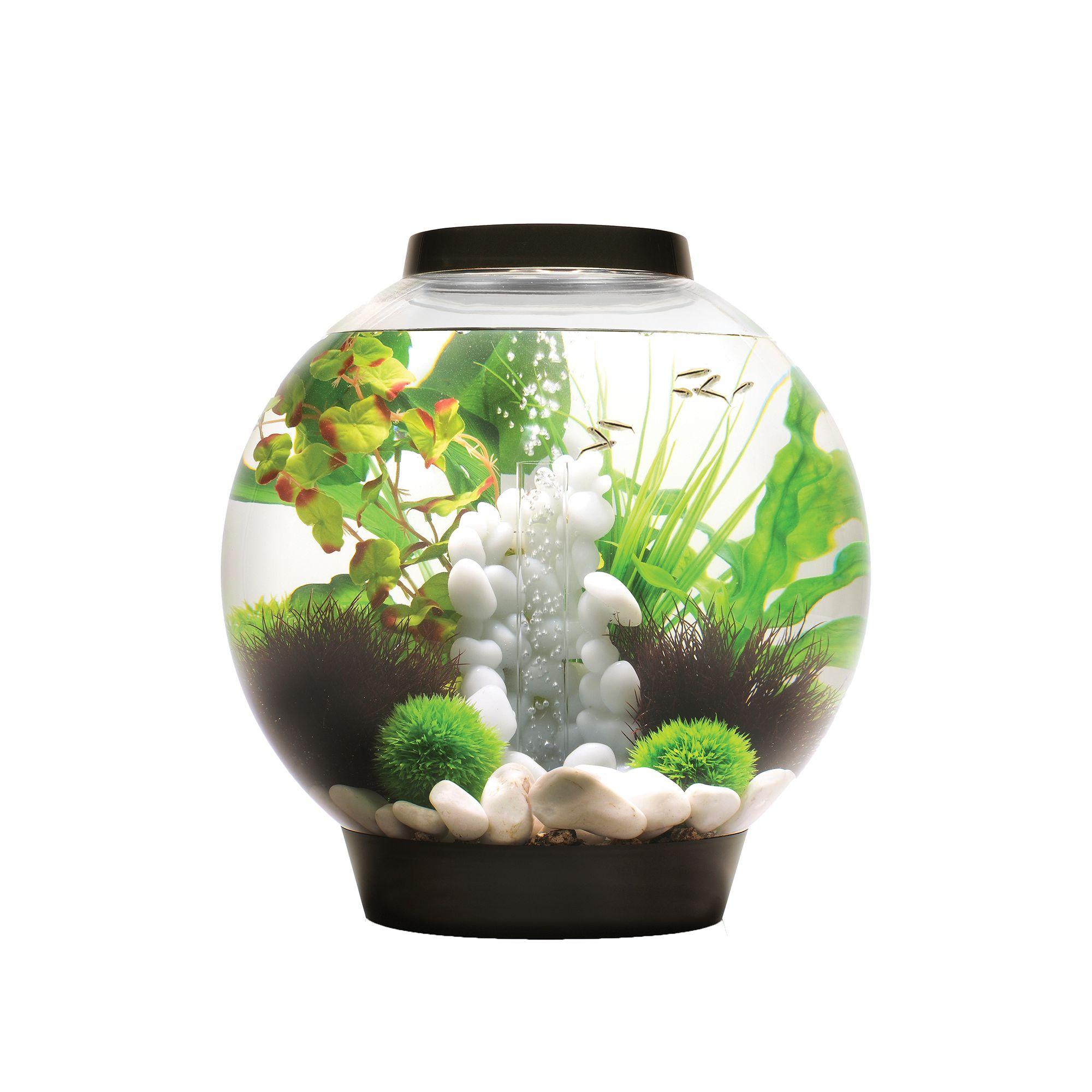 Biorb Classic 8 Gallon Led Aquarium Black