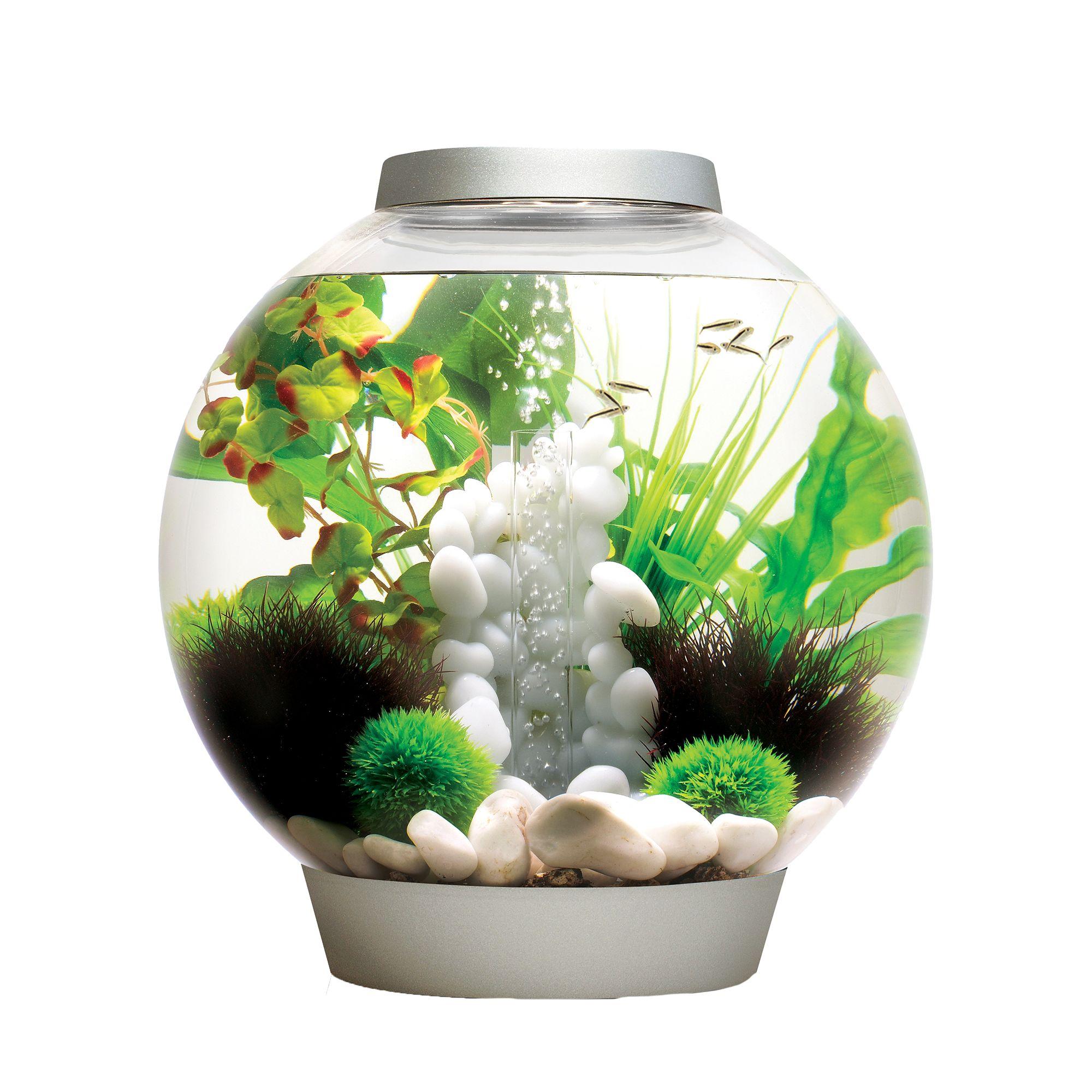 Biorb Classic 8 Gallon Led Aquarium Silver
