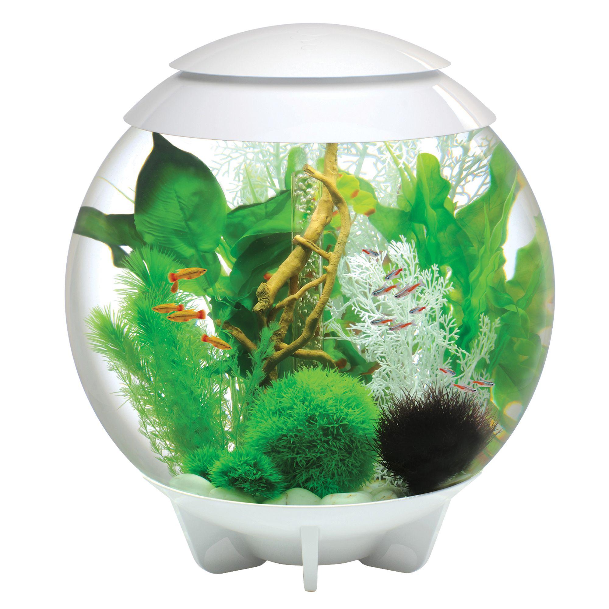 Biorb Halo 16 Gallon Led Aquarium White