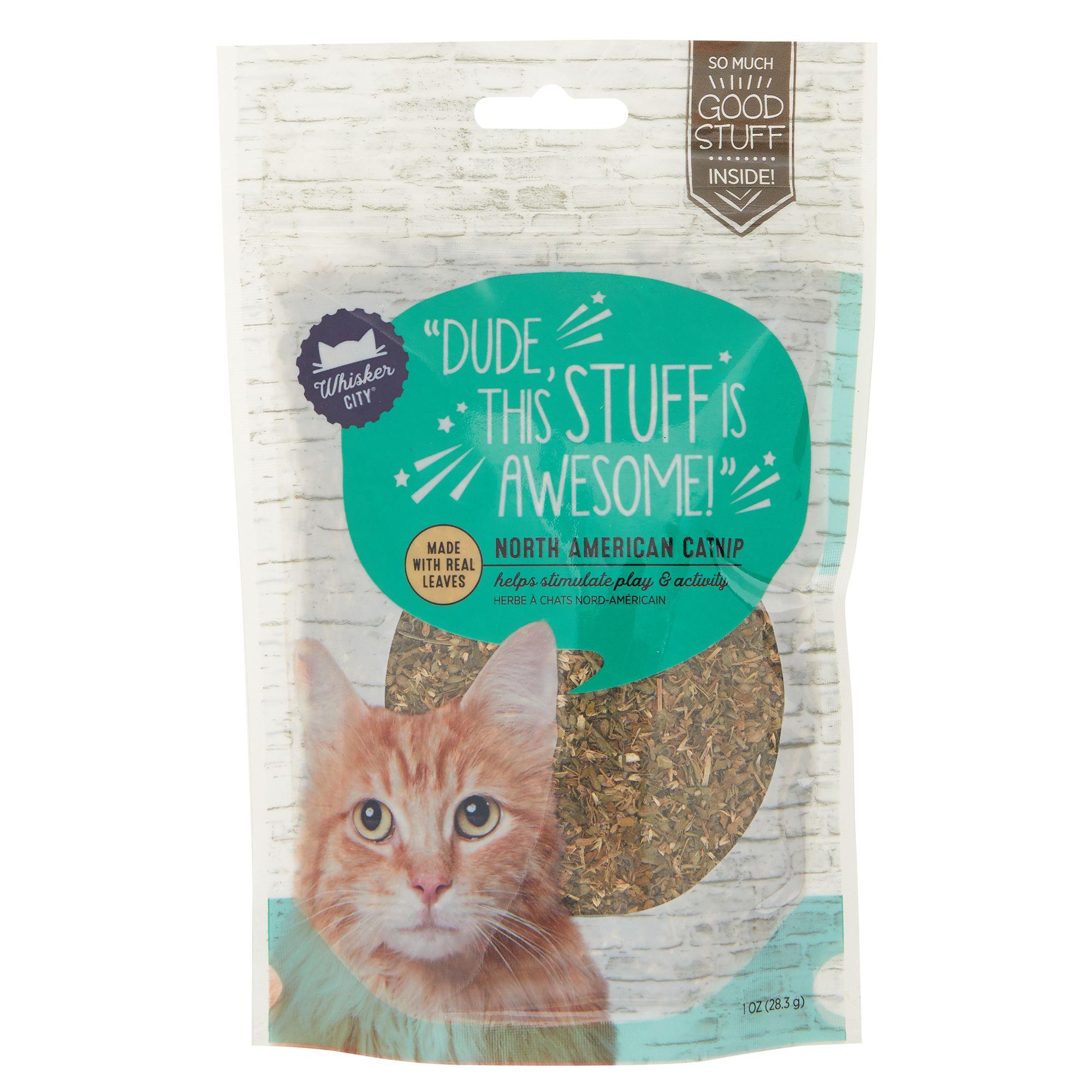 Whisker City Natural Catnip size: Medium 5266800