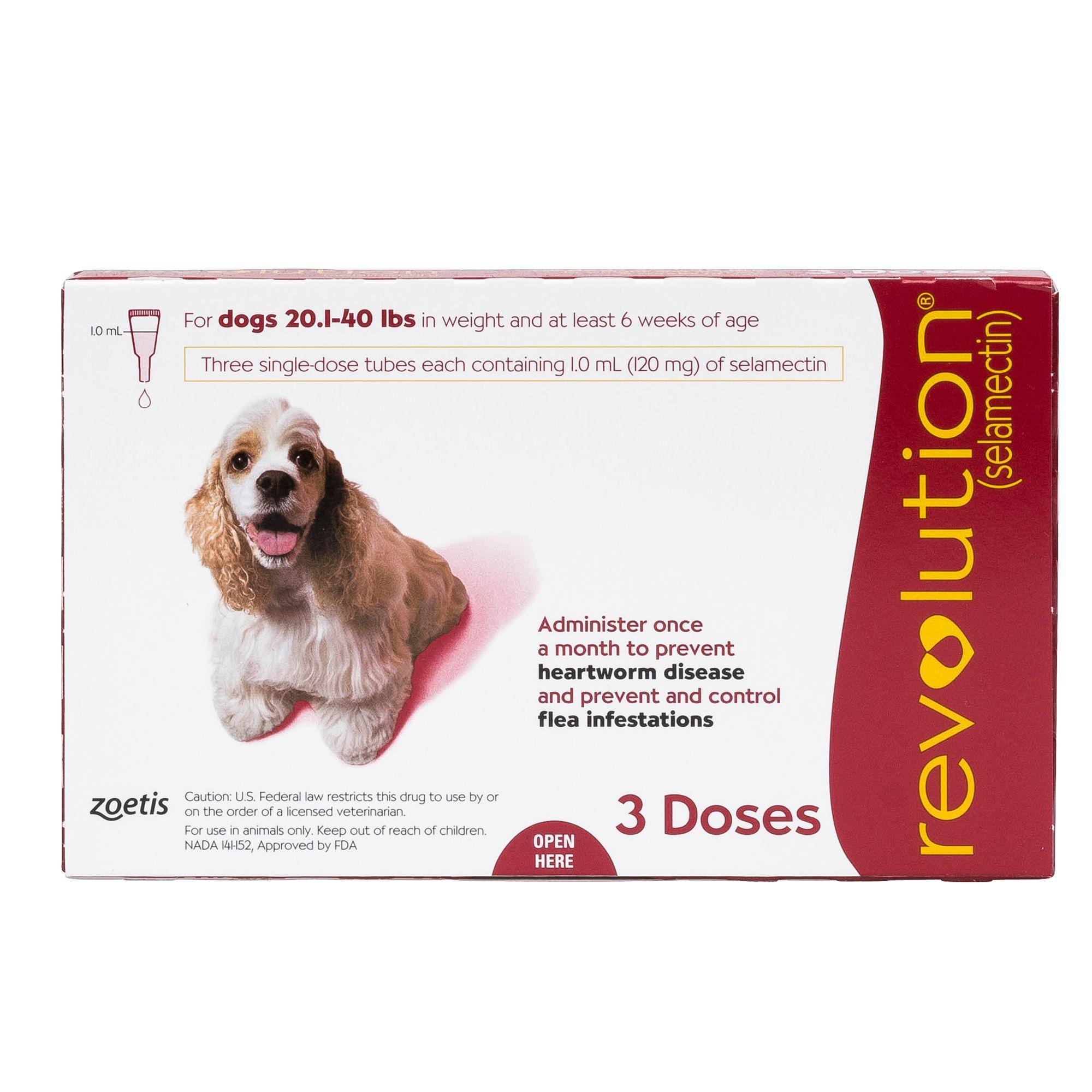 Ear Mites In Dogs Petsmart