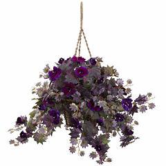 Morning Glory Hanging Basket