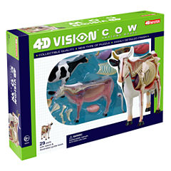 4D Master 4D Vision Cow Anatomy Model