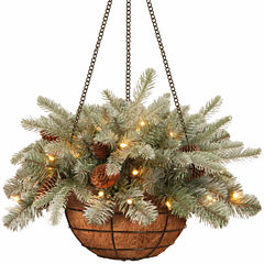 National Tree Co. Frosted Artic Spruce Feel Real Hanging Basket
