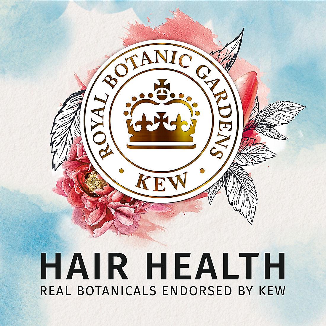 graphic about Herbal Essences Coupons Printable named Natural Essences bio:renew Argan Oil of Morocco Shampoo, 29.2 fl. oz.