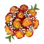 Rose Bouquets, 96 Stems - Assorted Bi-Color Novelty