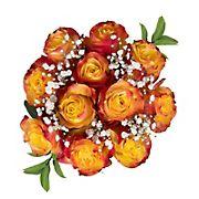 Rose Bouquets, 96 Stems - Assorted Bi-Color Novelty