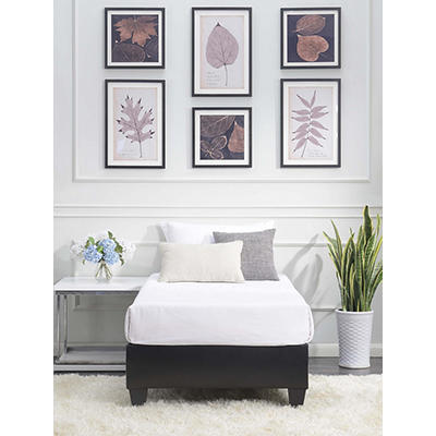 Picket House Furnishings Abby Twin-Size Platform Bed - Black
