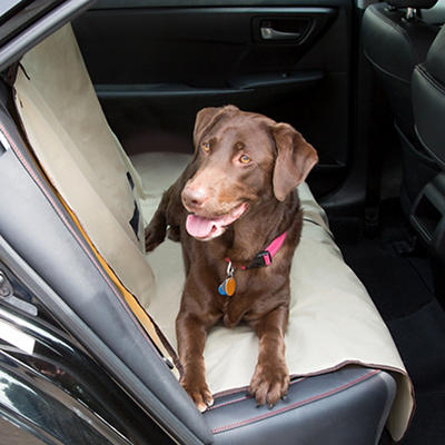 PETMAKER Waterproof Car Pet Seat Cover