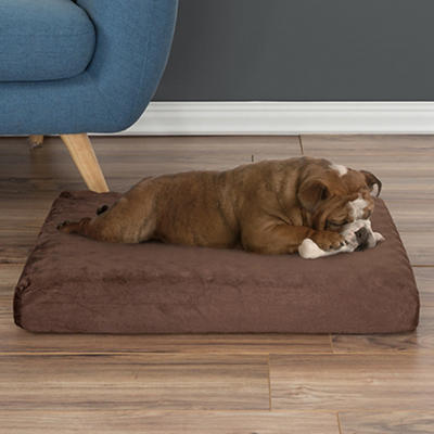 Orthopedic Small/Medium Memory Foam Pet Bed - Brown