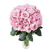 InBloom Pink Starburst Garden Rose Bouquet, 24 pc.