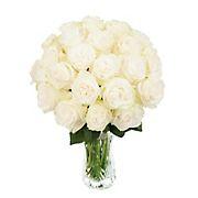 InBloom Simplicity Garden Rose Bouquet, 24 Stems