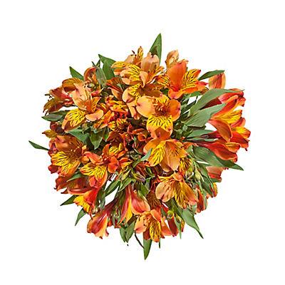 InBloom Alstroemeria, 120 Stems - Orange