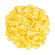 5,000 Rose Petals - Yellow