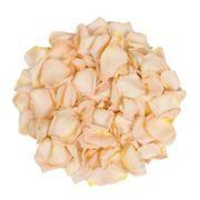 5,000 Rose Petals - Peach
