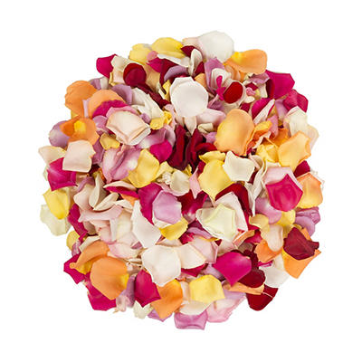 5,000 Rose Petals - Rainbow