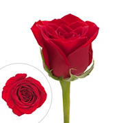Rainforest Alliance Certified Roses, 125 Stems - Red