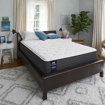 Sealy Response Performance Lakeview Drive Plush Eurotop Queen Size Mat