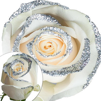 White Glitter Rose, 100 ct. - Silver
