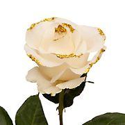 White Glitter Rose, 100 ct. - Gold