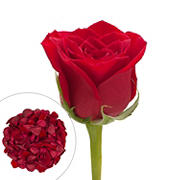 Roses and Petals Combo Box, 75/2,000 pk. - Red