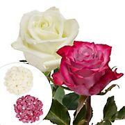 Roses and Petals Combo Box, 50/25/2,000 pk. -  White, Lavender