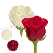 Roses and Petals Combo Box, 50/25/2,000 pk. - Red, White