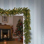 "National Tree Company 9' x 10"" North Valley Spruce Garland with Dual Color Lights"
