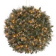 "National Tree Company 16"" Glittery Bristle Pine Kissing Ball - Clear"
