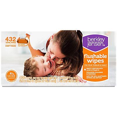 Berkley Jensen Family and Toddler Moist Flushable Wipes, 432 ct.